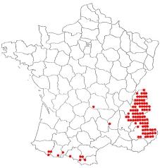 distribution française